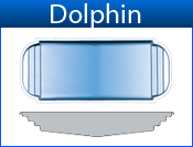 San Juan Dolphin (Iridium Colors)